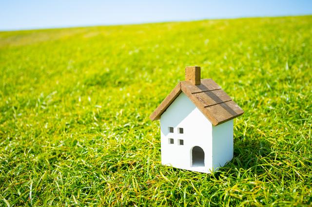 芝生を美しく保つために必要な手入れ